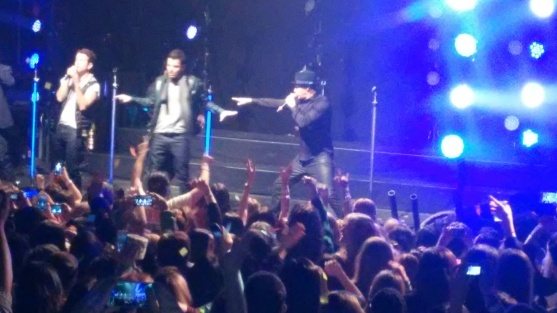 The crowd goes wild for NKOTB.