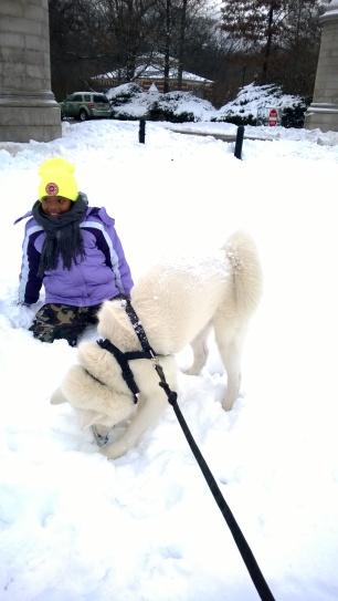 Dogs plus kids, plus snow equal FUN